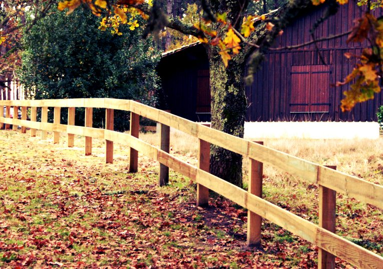 clôture campo en bois brut